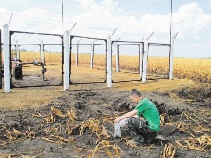 Экологи уже отправили пробы воды и почвы на экспертизу