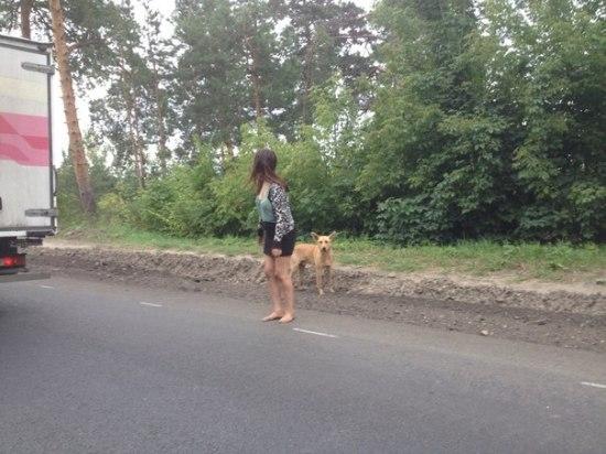 http://tltgorod.ru/pics/201508/600_ehzkstna-zi_n3055740.jpg