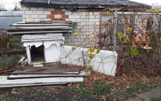(фото) Родственники продали две квартиры пенсионерки и поселили ее в курятнике под Тольятти
