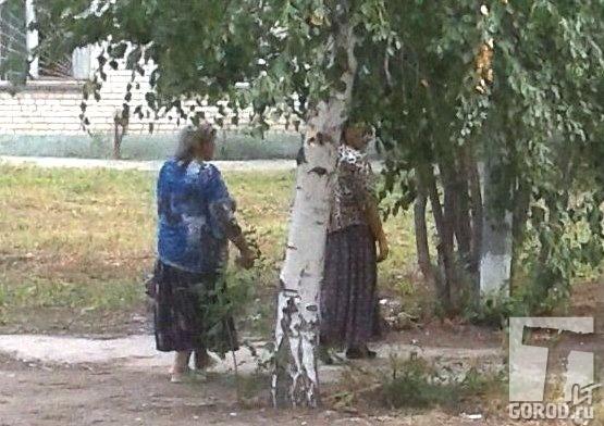 Детская поликлиника нахимова рязань