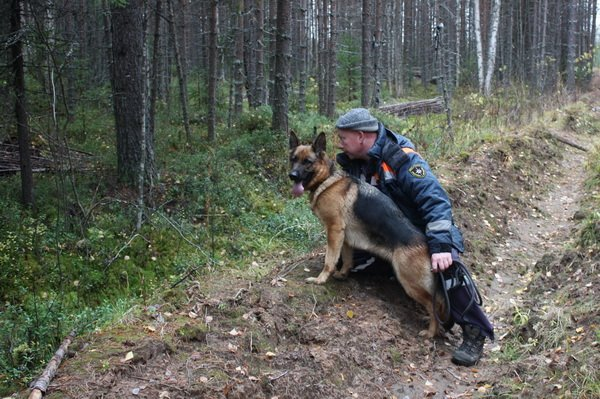 Когда будет амнистия в 2015 году в россии последние новости